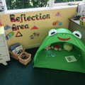 Reflection in Willow Class