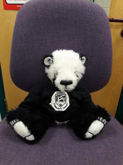 'Ted' gets comfortable on the teachers' chair!