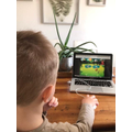 Teddy playing phonics games on the laptop