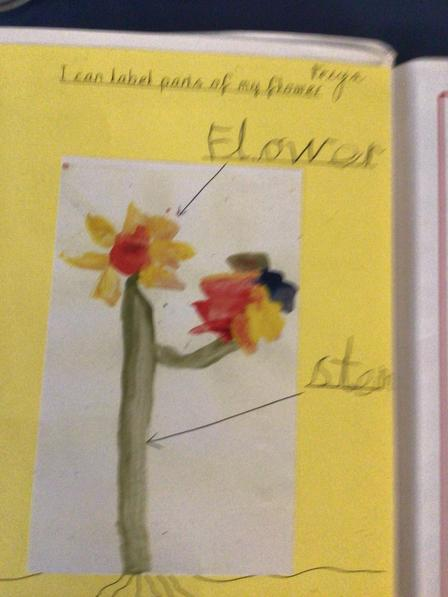 An example of work from Reception