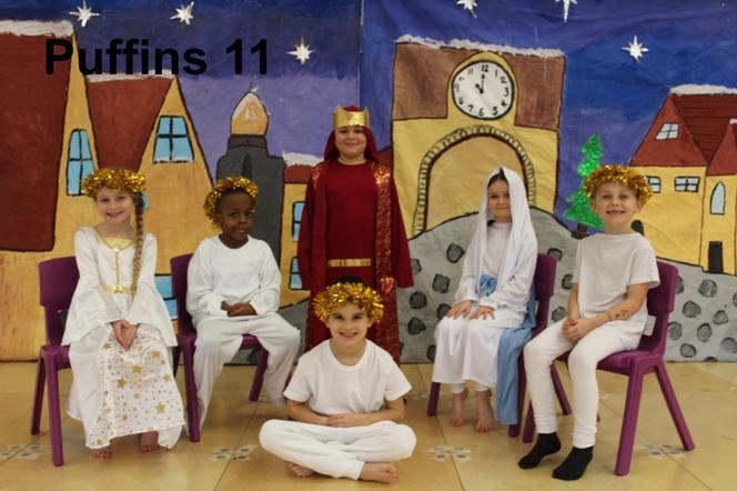 Puffins 11