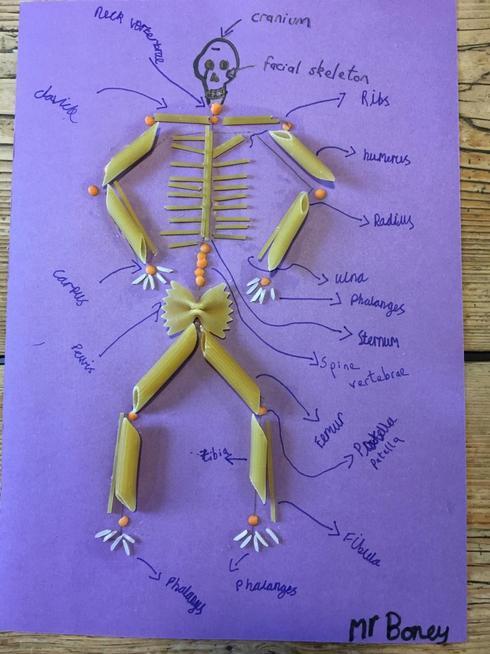 Meet Mr Boney