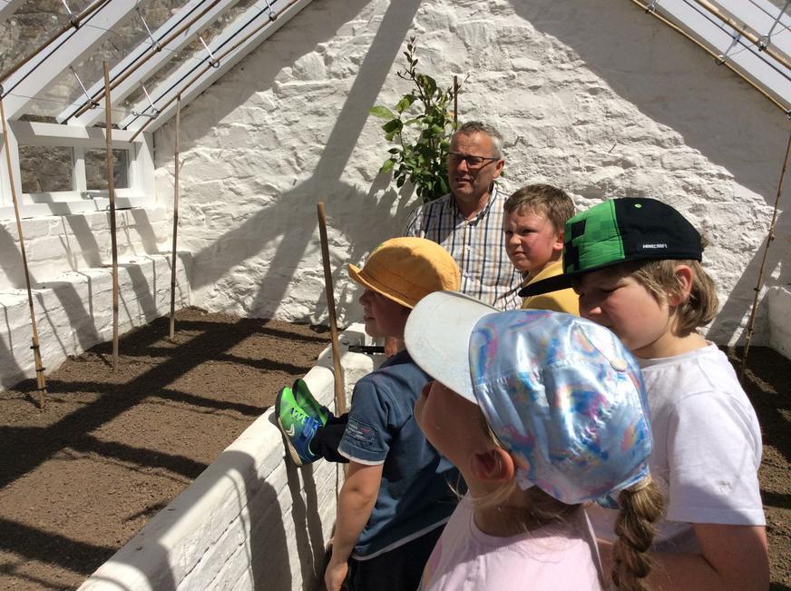 Examining the greenhouse.