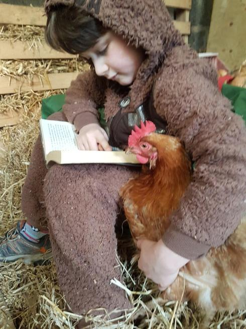 Sharing a book with his lucky chickens