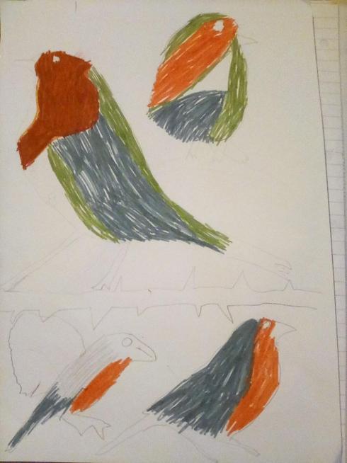 Maisie's birds
