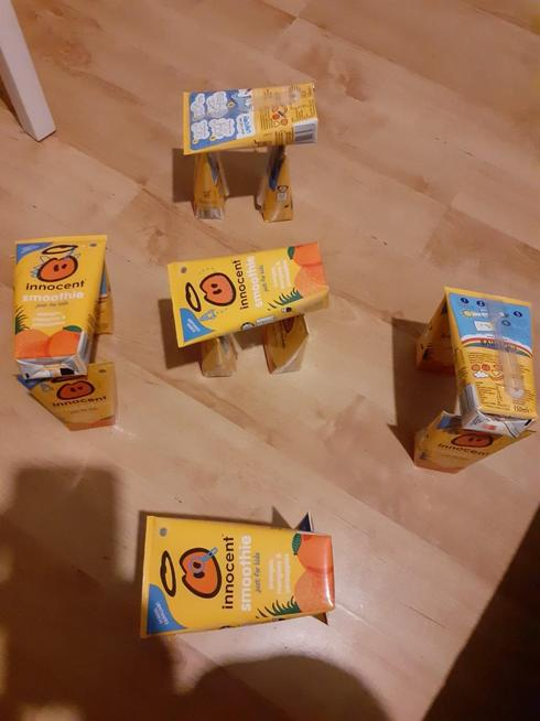 Jayden used Smoothie cartons.