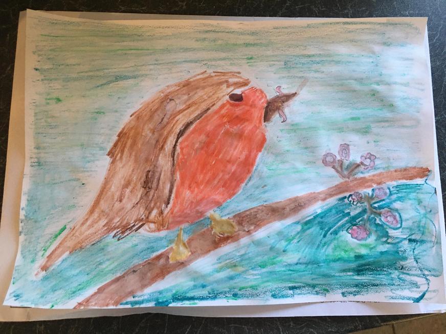 Lottie's robin