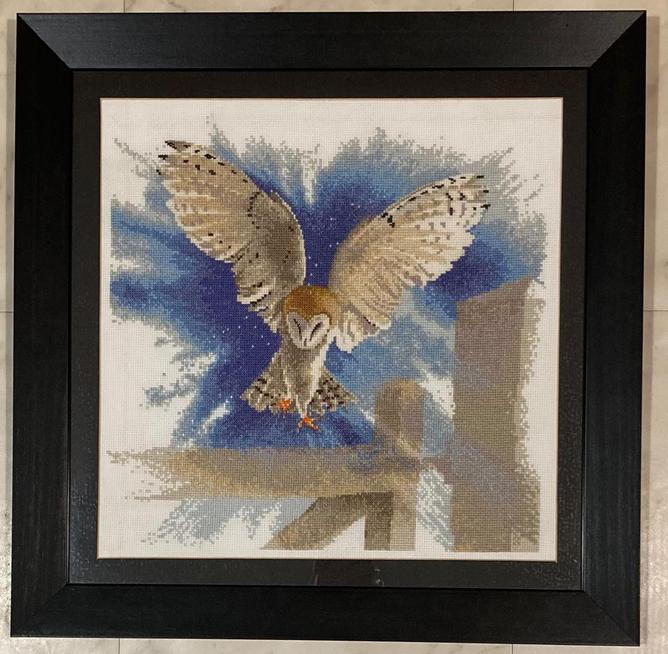 Mrs Bragg's cross-stitch owl