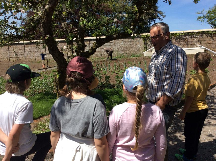 Learning about the apple trees.