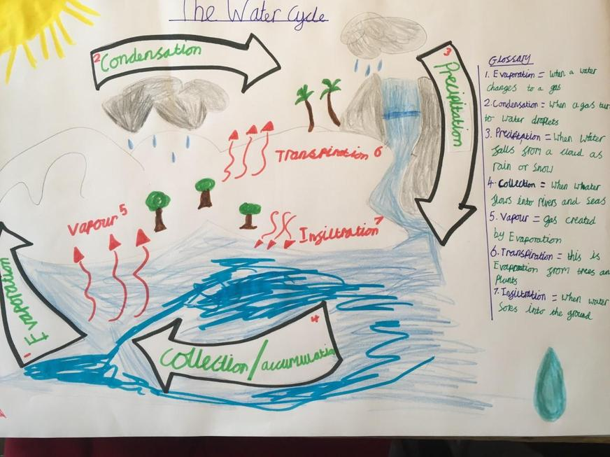 Florence's Water Cycle poster.