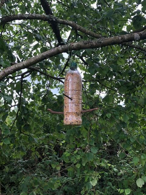 A bottle bird feeder