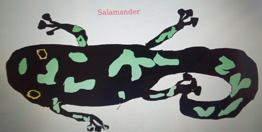 A computer salamander