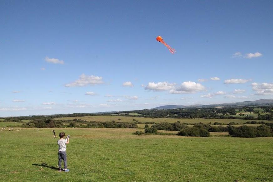An amazing octopus kite