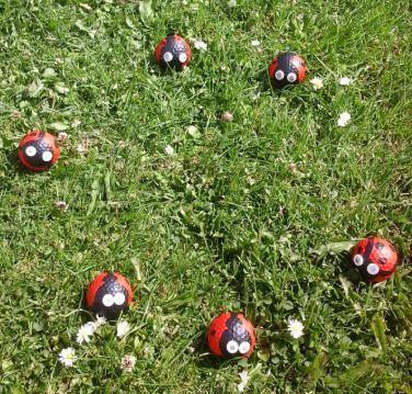 Ladybird golf balls