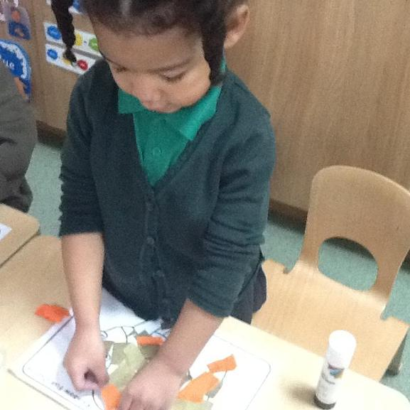 Cutting and collaging fish