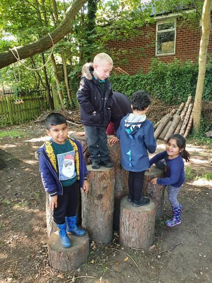 Exploring the logs