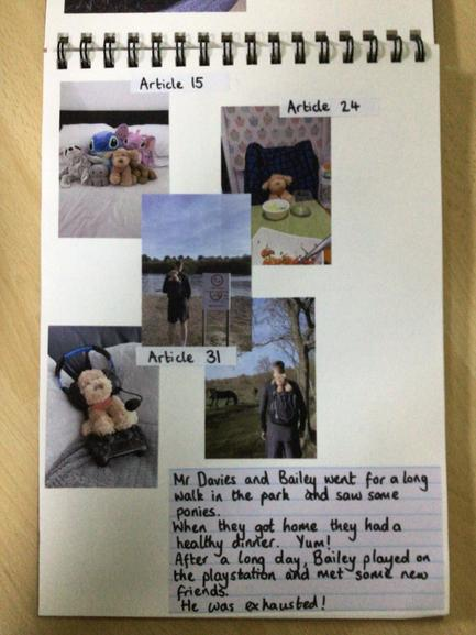 Mr Davies knew Bailey deserved to share his music and enjoy walks outdoors!