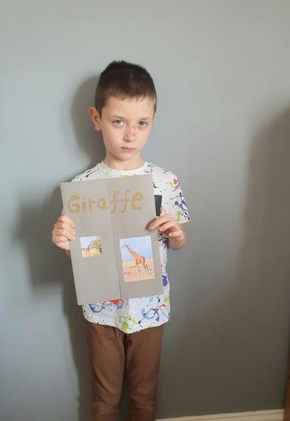 Dawid has been researching Giraffes