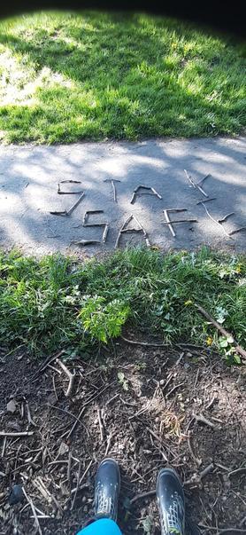 Very creative on your walk Jake!