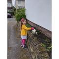 Freya has been watering plants