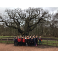 Sherwood Forest Trip