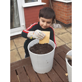 Shahzad planted the seeds we sent!