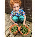Look how big Freddie's plants have grown!