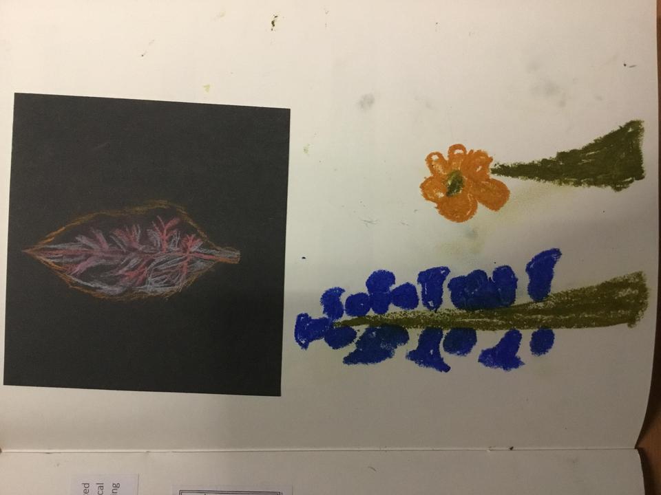 Sam's drawings