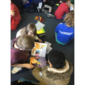 Year 1 Book Share