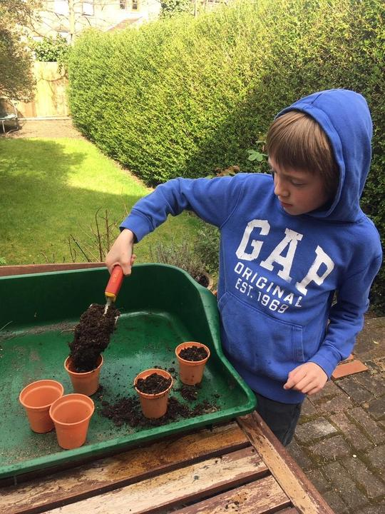 Jack planting seeds.