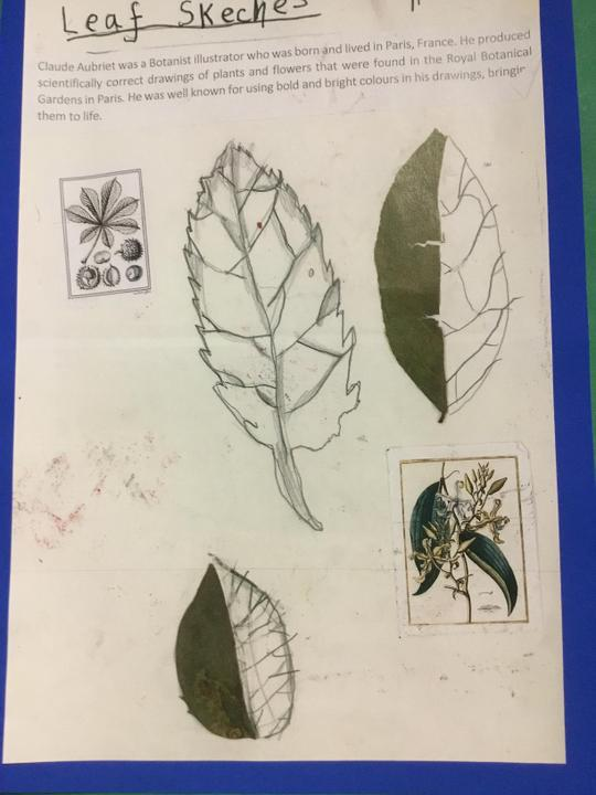 Nia's sketches
