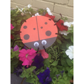 Zachary's ladybird was hiding in the flowers!