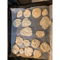Isobel's salt dough fossils