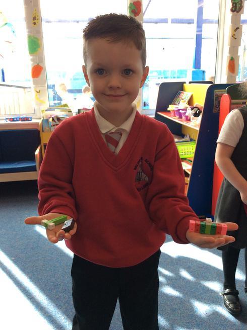 Mason made a lifecycle model of a caterpillar.