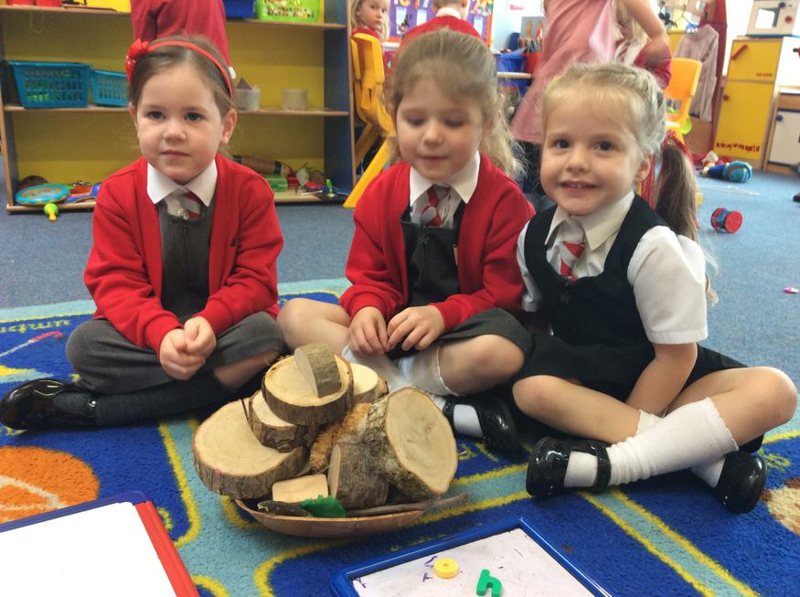 Using natural resources to make a nest.