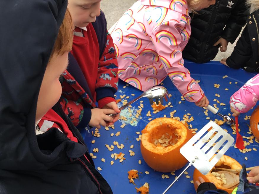 Counting the seeds