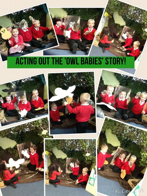 We love our 'Owl nest'!