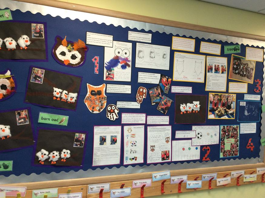 Our learning journey of Owl Babies part