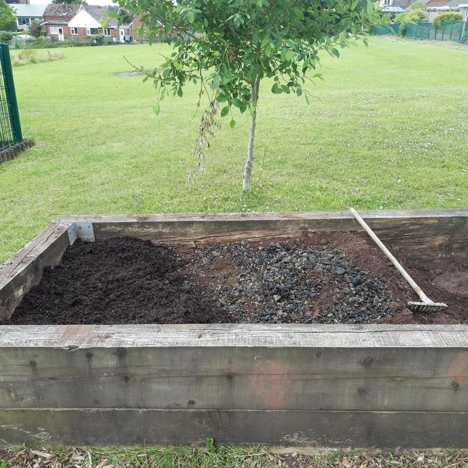Beds weeded and prepped with Alpaca Gold