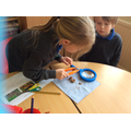 We investigated carnivores, herbivores & omnivores
