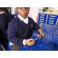Painting our clay patchwork elephants!