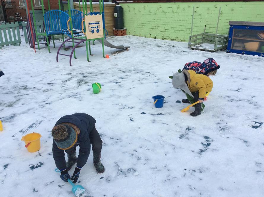 Snow days w/c 8.2.21
