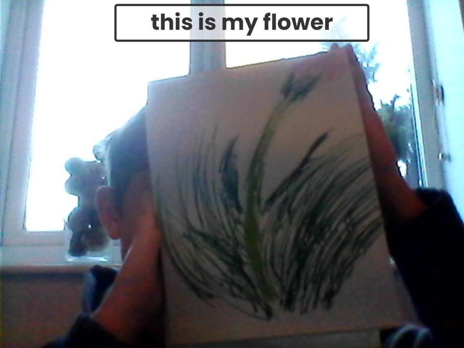 EM's creation