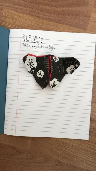 Rhys' lovely paper butterfly 23.03.20