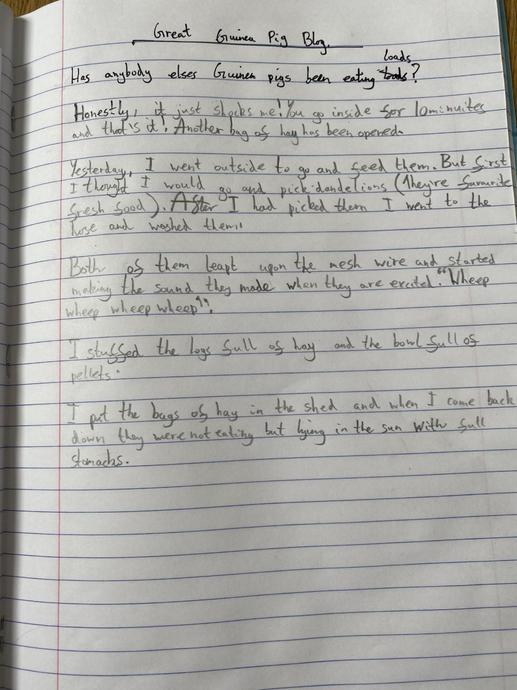 SG blog writing for English - good work!