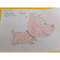 The lovely Archie, by James