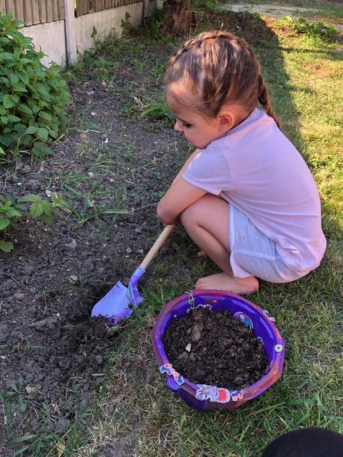 Growing (School grounds) - Planting and digging