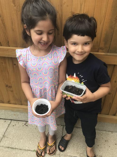 Mohid and his sister sharing the cress seeds