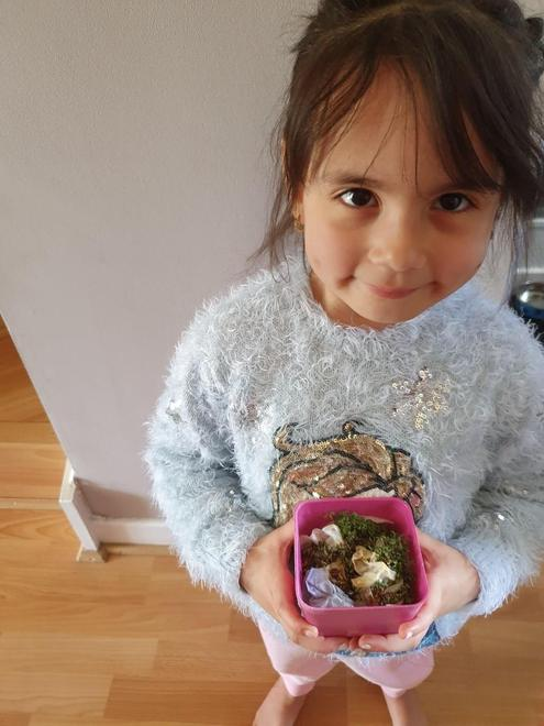 Alisha planted her cress seeds