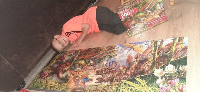 Reuben's jigsaw puzzle